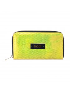 Case for brushes with zipper number 4, color: golden, KODI
