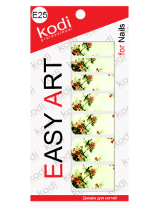 Easy Art E25, KODI
